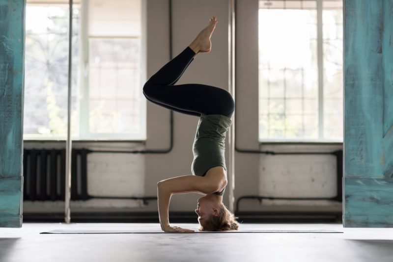 What are the Basic Ideas of Yoga