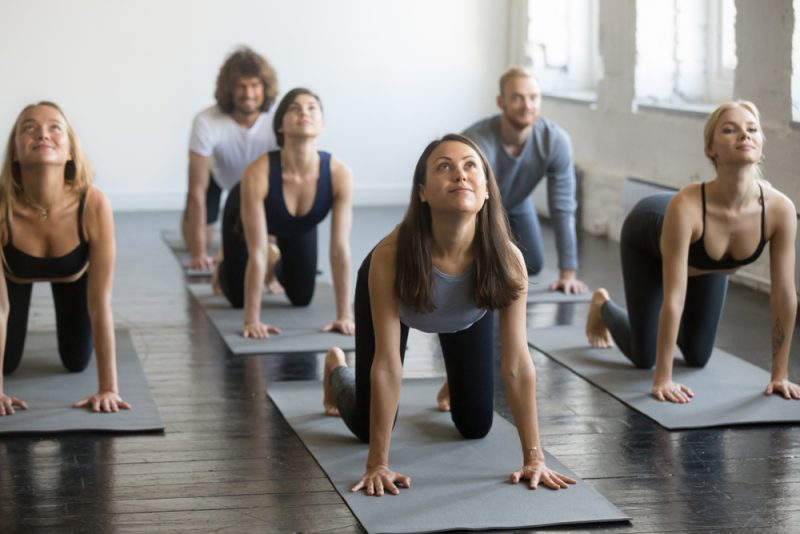 When to Use Cat-Cows in a Yoga Class