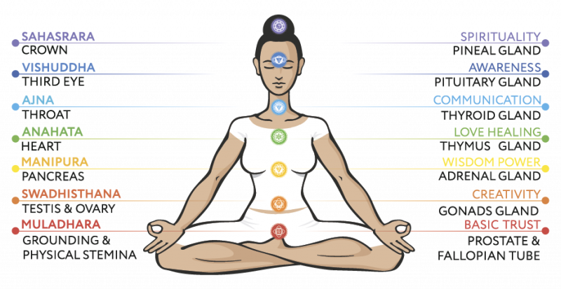Overview of the Chakras
