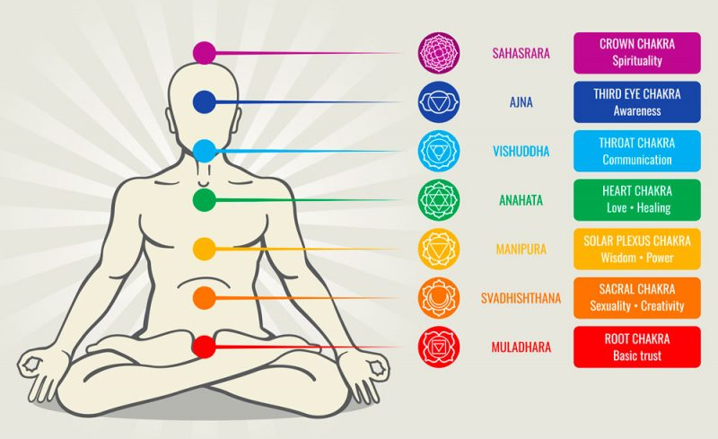 The Chakras and the Subtle Body